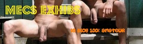 MECS EXHIBS
